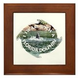 ...Florida Dolphin... Framed Tile