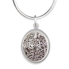 Appaloosa In Trees Silver Oval Necklace