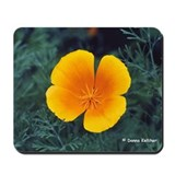 Poppy Mousepad