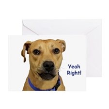 Yeah Right Dog Birthday Greeting Cards