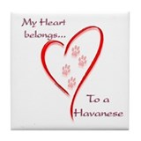 Havanese Heart Belongs Tile Coaster