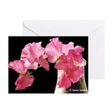 Sweet Peas Greeting Cards (Pk of 10)