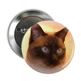 Siamese Cat Button