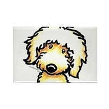 Yellow Labradoodle Face Rectangle Magnet (100 pack