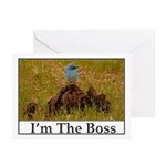 I'm The Boss Greeting Cards (Pk of 10)