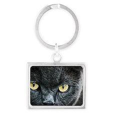 Cat Eyes Landscape Keychain