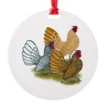 Sebright_Assortment.png Ornament