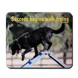 Success Begins With Trying Mousepad