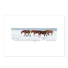 Chincoteague Ponies Postcards (Package of 8)