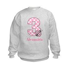 Personalized Pink Ladybug 3rd Birthday Sweatshirt