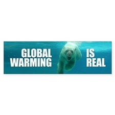 GLOBAL WARMING IS REAL Bumper Bumper Sticker