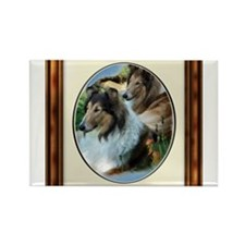 Rough Collie Art Magnets