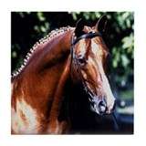 Cool Trakehner Tile Coaster
