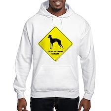 Greyhound Crossing Jumper Hoodie