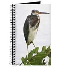 """Green heron"" Journal"