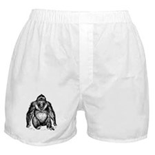 Gorilla Sketch Boxer Shorts
