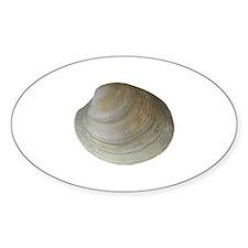 Quahog Clam Decal