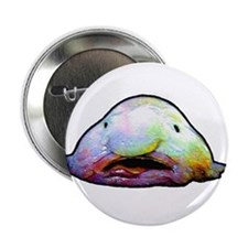 "Blobfish, Psychrolutes marcidus 2.25"" Button"