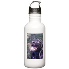 Happy Lab Water Bottle