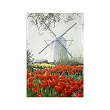 Windmill and Tulips - Holland Rectangle Magnet