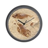 Fish Fossil Wall Clock