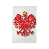 Polish Eagle v10 Rectangle Magnet (10 pack)