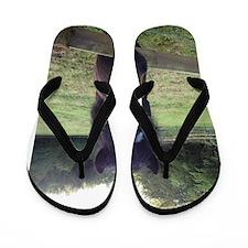 Sooty Flip Flops