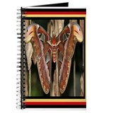 Cool Chrysalis Journal