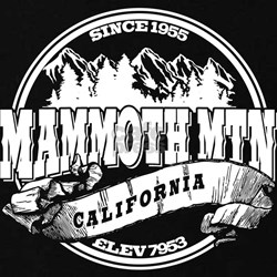 Mammoth Mtn Old Circle Black T