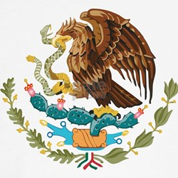 Mexico COA Shirt