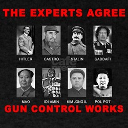 The Experts Agree...Gun Control Works T-Shirt