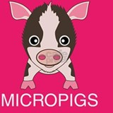 lovemicropigs_multi_but Shot Glass