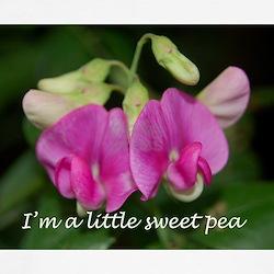Little Sweet Pea T