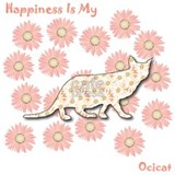 Ocicat Happiness Mug