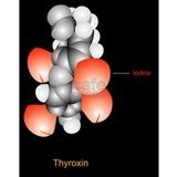 Thyroxine hormone mole Water Bottle