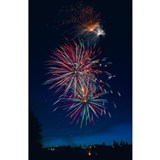 Fireworks display Stainless Steel Water Bottle