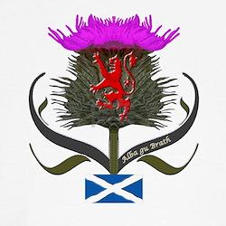Scotland thistle lion and saltire flag T
