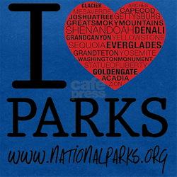 heart parks Maternity Tank Top