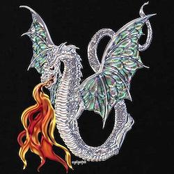 Dragon Fire T