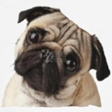 Pug gifts Underwear & Panties