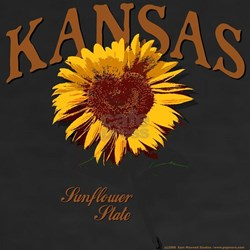 Kansas - The Sunflower State! Shirt