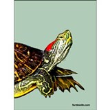 Sassy Red Eared Slider Turtle Mug