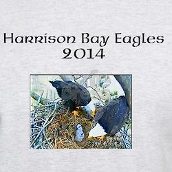 Harrison Bay Eagles Men's Ash Grey T-Shirt