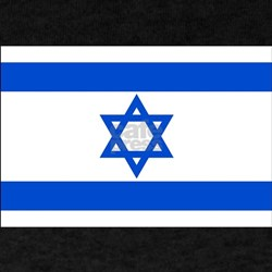 Israel State Flag T-Shirt