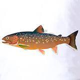 Arctic char fish Polos