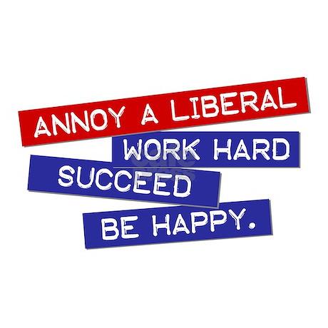 liberals lie gun agenda