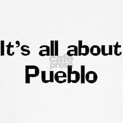 About Pueblo T