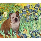 Irises & English Bulldog #1 Mug