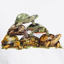 Turtle Pyramid Shirt