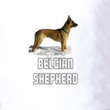 Belgian shepherd laekenois Polos